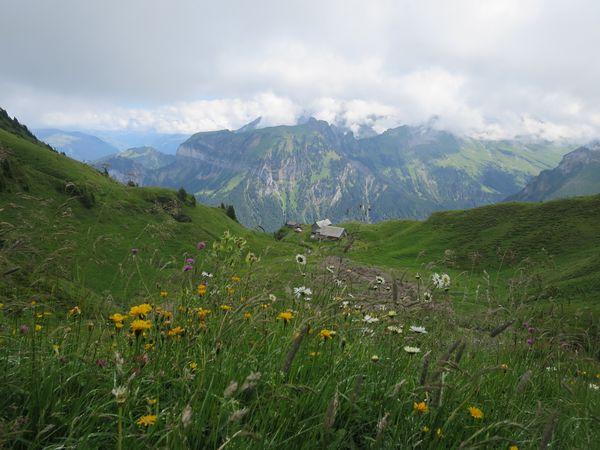 Alpenkranz 1. Etappe:  Klewenalp - Hinterjochli - Gitschenen (Isenthal)