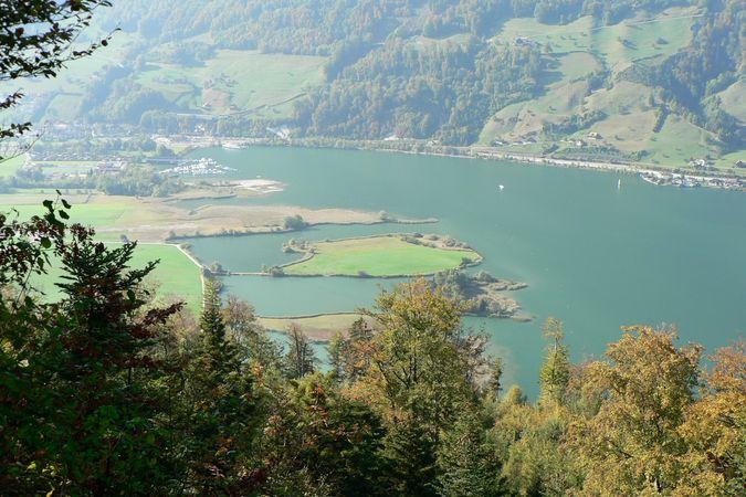 Zingel on the Mueterschwandenberg