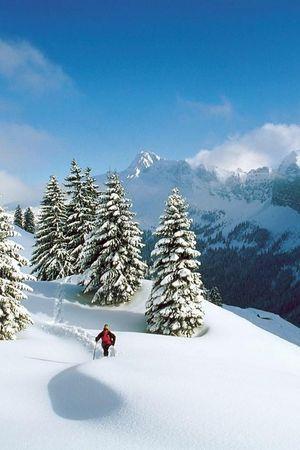 Winter-Special - Seeblick Höhenhotel, Emmetten