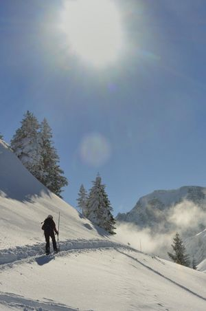 #StayRegional-Special im Seeblick Höhenhotel