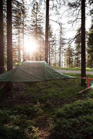 Tree Tents am Pilatus