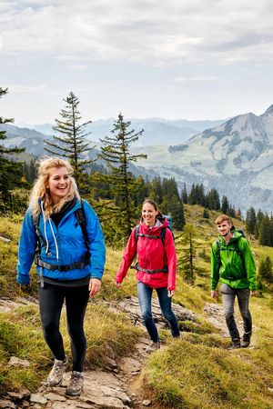 All hiking tours in the region