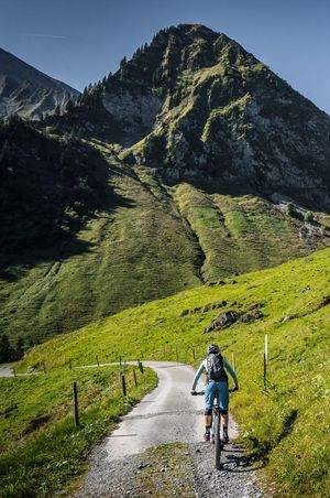 The best bike tours in Nidwalden
