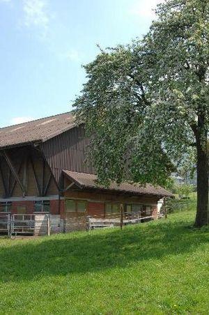 "Bed & Breakfast Farm ""Bächli"", Beckenried"