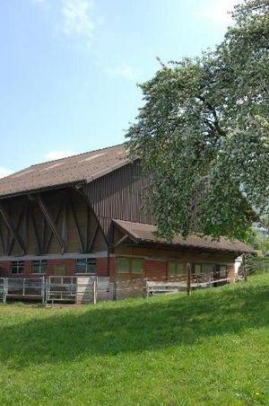 Bed & Breakfast Bauernhof Bächli, Beckenried
