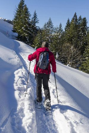 Snowshoeing and Winter walking Maria-Rickenbach
