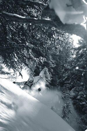 Tiefschnee Skitechnik- & Freeridekurse - Mountbee