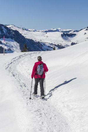 Schneeschuhlaufen und Winterwandern