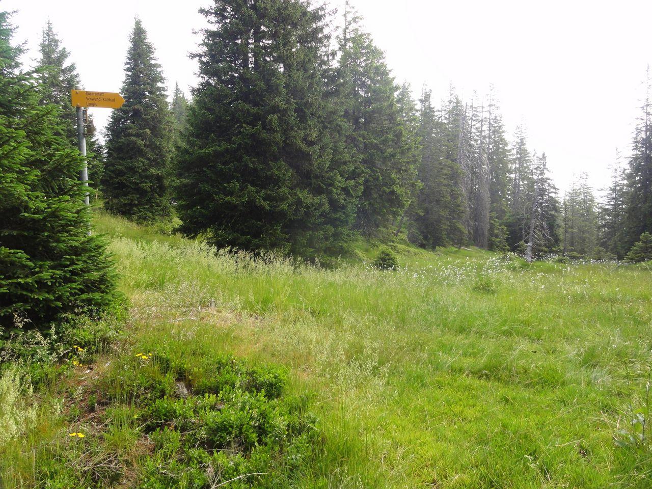 Höhenroute Langis-Pilatus