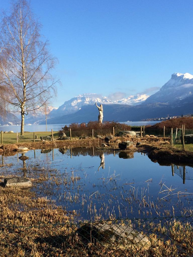 Via the popular Neuseeland bathing meadow to Beckenried