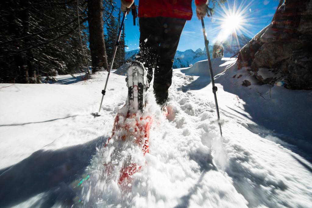 Schneeschuhtrail 899: Förster-Trail, Seelisberg